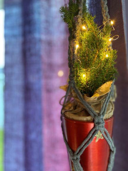 Joulukuu ja perutut pajat